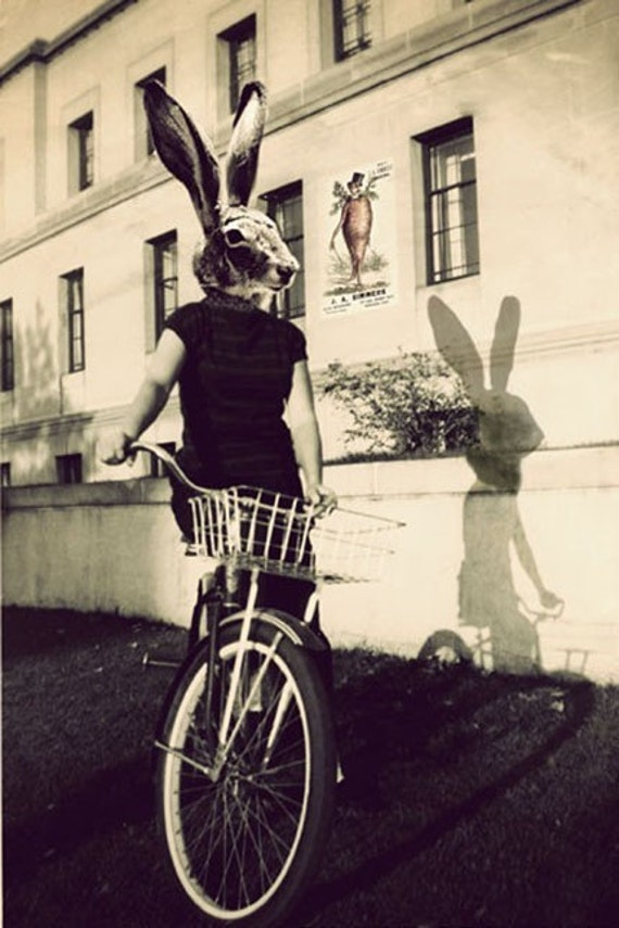 Bunny Head, Rabbit, Photo Collage Print, Bunny on Bicycle, Surreal Photograph, Strange, Modern, Large Wall Art