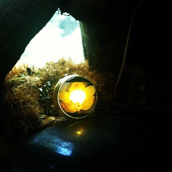 Yellow Orchid Night Light Ring