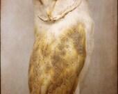 HALF PRICE SALE - Owl, Original 5x7 film fine art photograph. Bird photography.
