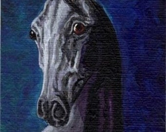 ACEO Black Horse Head Original Art Painting