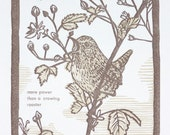 Wren Print, Original Hand pulled Print, Bird Art