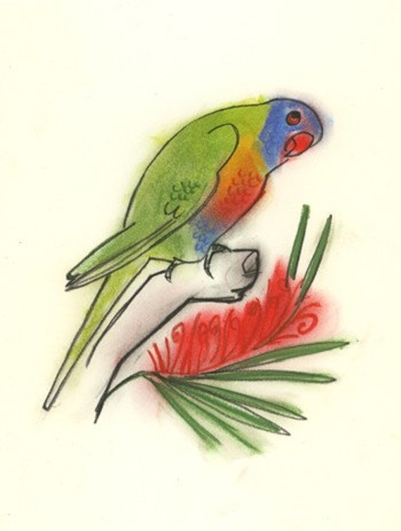 my favourite pet parrot essays An essay/article on the parrot article shared by the below given essay / article is about the beautiful bird parrot people who keep them as pets.
