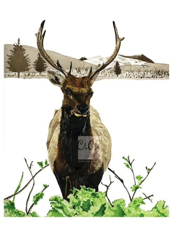 Spring Elk Watercolor Print