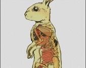 Vintage Rabbit Anatomical cross stitch pattern No.232