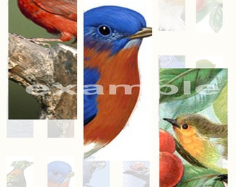 Birds 1X3 Inch...Digital Collage Sheet