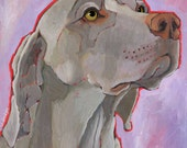 Weimaraner No. 1 - magnets coasters and art prints