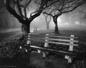 Park Benches, Black and White Photography Mysterious Fog Photograph, Fine Art Print, Free Shipping