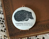 Hedgehog Locket Necklace, Vintage Dictionary Illustration - Vintage Locket - Brass Chain - Ready to Ship
