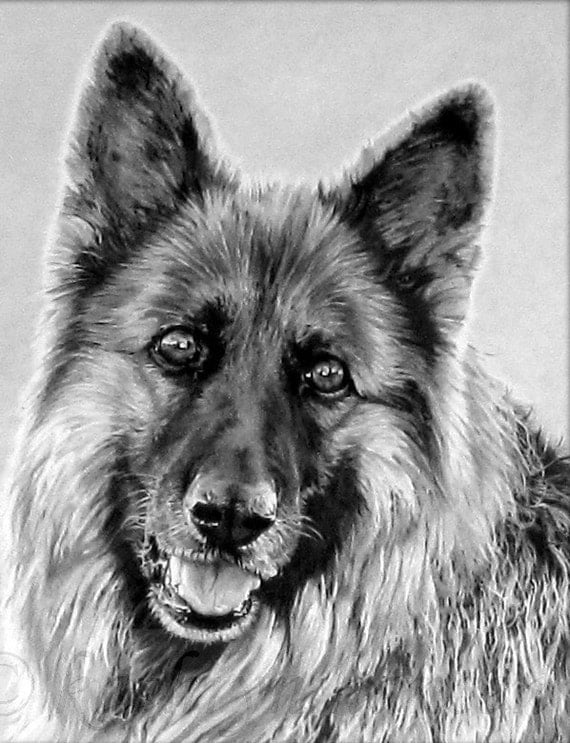 special commission portrait for Jodie Campbell