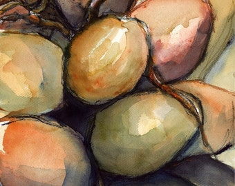 Art Painting Watercolor Tropical Coconuts Palm Tree Jamaica Caribbean  Print