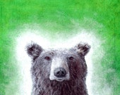 """Bear-  5""""x7"""" Print"""