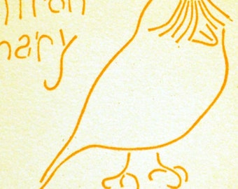 Saffron Canary Postcard