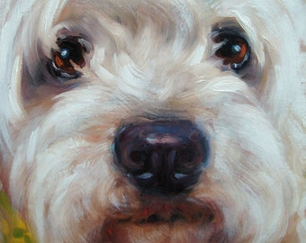 CLOSE UPS, custom Pet Portrait oil paintings by puci, 8x8 inches