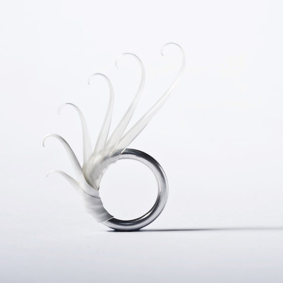 Sue Ring with Soft White and Translucent spines