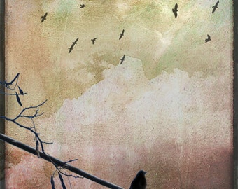 Bird Photo Collage, Bird on a Wire, Nature Photo Collage, Stormy Skies Photo, Nature Wall Decor, Bird Lovers Photo, Cottage Art Decor