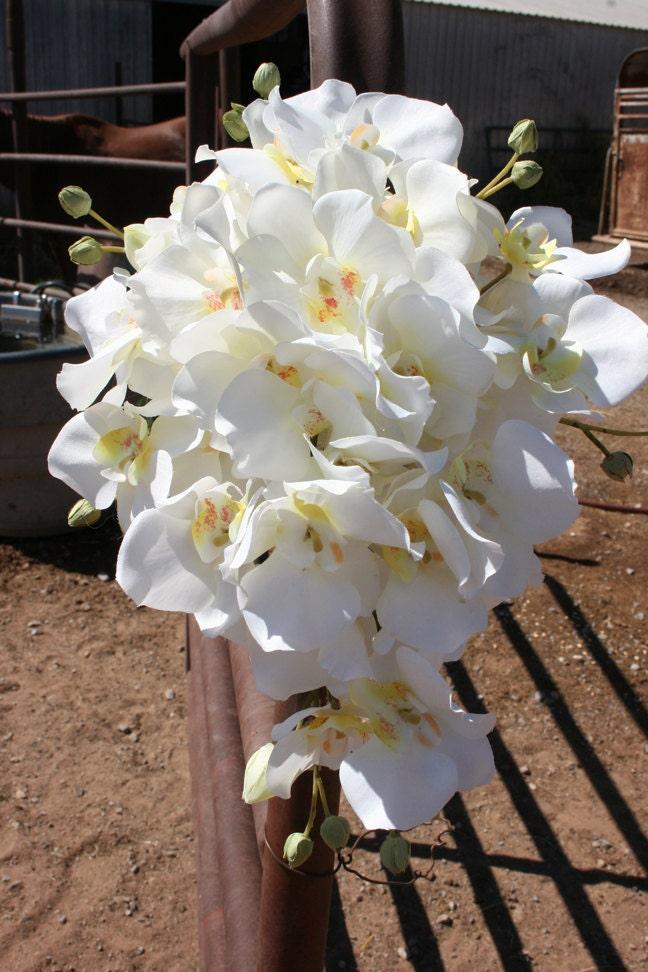 Cascade Orchid Bridal Bouquet : White cascading orchid bridal bouquet