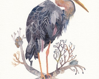 Grey Heron - Archival Print