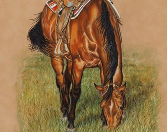 Grazing Quarter Horse Print from Colored Pencil Drawing - B Bruckner