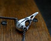 Bird Skull Necklace - Sterling Silver Bird Skull Necklace Raven Skull Necklace Crow Skull Necklace 006