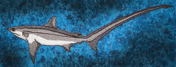 """Awesome Long-tailed Thresher Shark Fox Shark """"Alopias vulpinus""""  Iron on Patch ready to ship"""