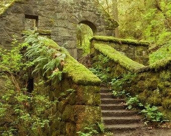 The Stone House - Forest Park Portland Oregon  Fine Art Photo - Archival Print