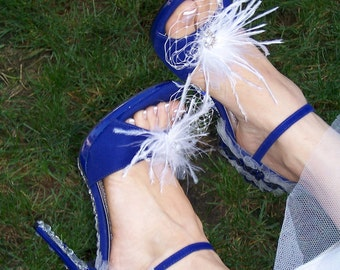 Bridal Shoe Clips, also available in Black, for prom and Brides Maids, Birdcage with Feather rhinestone center