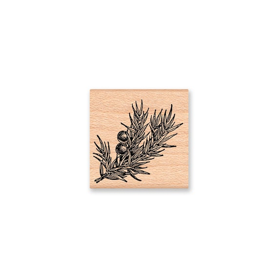 JUNIPER BOUGH - Wood Mounted Rubber Stamp (mcrs 11-14)