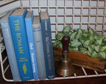 Instant Collection of Periwinkle Blue Vintage and Antique Books