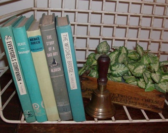Instant Collection of Aqua and Gray Vintage and Antique Books