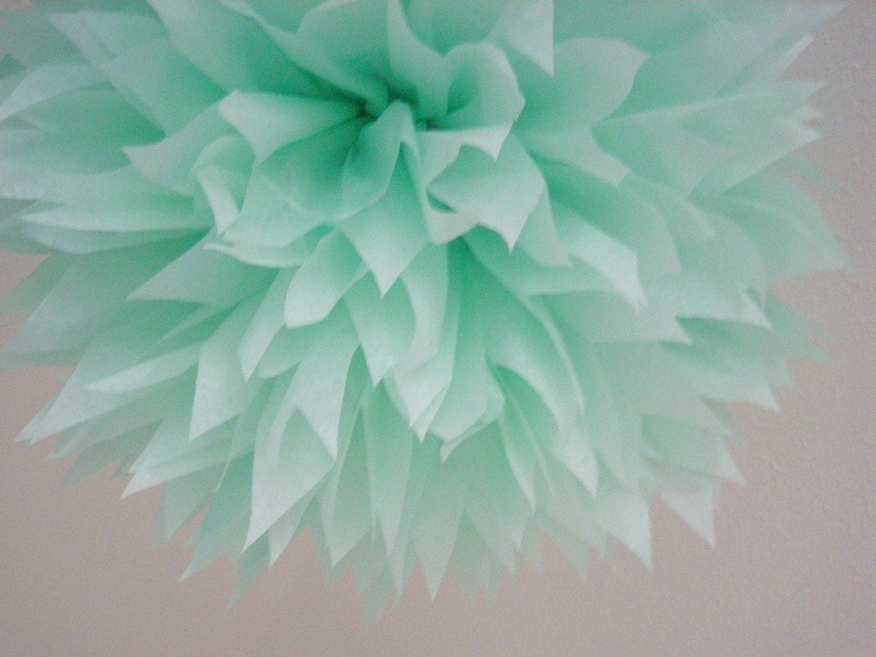 Cool mint 1 tissue paper pom diy wedding decorations for Cool paper decorations