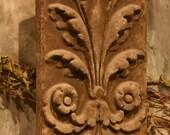 acanthus plaque
