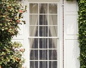 Charleston Plantation Window Print- South Carolina Southern Art - Window Covered in Roses and Ivy - 5x7 Color Photography Print