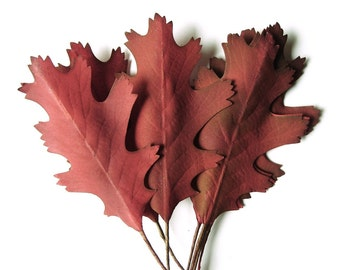 Fall Leaves Vintage Cranberry Red Vintage Millinery Flower Oak Leaves Floral Craft Wreath Supplies