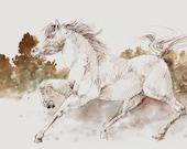 White Horse- Original Watercolor