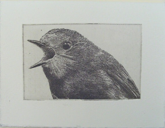 original etching of a shouting bird,hand pulled