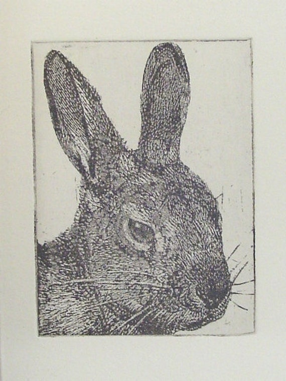 Original Etching of a rabbit head,hand pulled