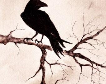 "Raven Crow Drawing Original Charcoal Drawing Halloween Dark Art 8x12"""