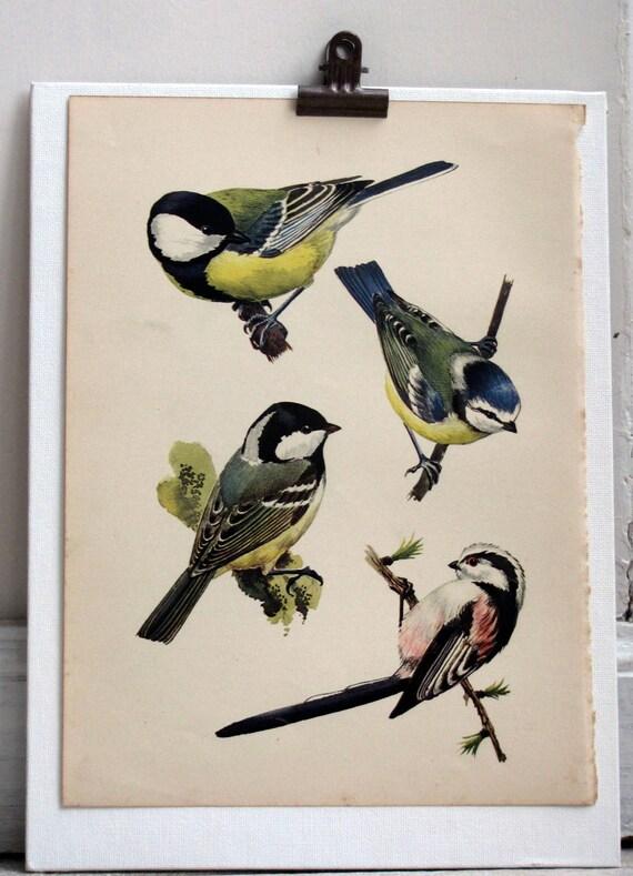 Four Little Birds, Original Vintage Plate