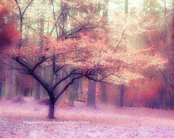 Nature Photography, Autumn Fall Woodlands Wall Decor, Dreamy Autumn Nature, Pink Purple Orange Fall Trees, Fine Art Fantasy Nature Print