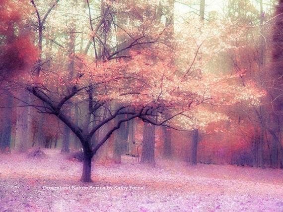 Nature Photography, Autumn Fall Woodlands Landscape, Dreamy Autumn Nature, Pink Purple Orange Fall Trees, Fine Art Fantasy Nature Photograph