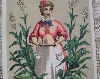 Lady in the Cornfield - Rare Victorian Trade Card - Gilbert S. Graves' Corn Starch - 1880's
