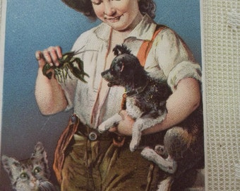 Young Boy with Dog, Cat and Crawdad - Victorian Trade Card - Pearline - 1800's