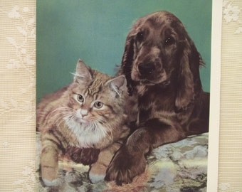 SALE---Fuzzy Tiger Cat and Dog - Cat Illustration Print - 2 Sided - ready to frame - 1961