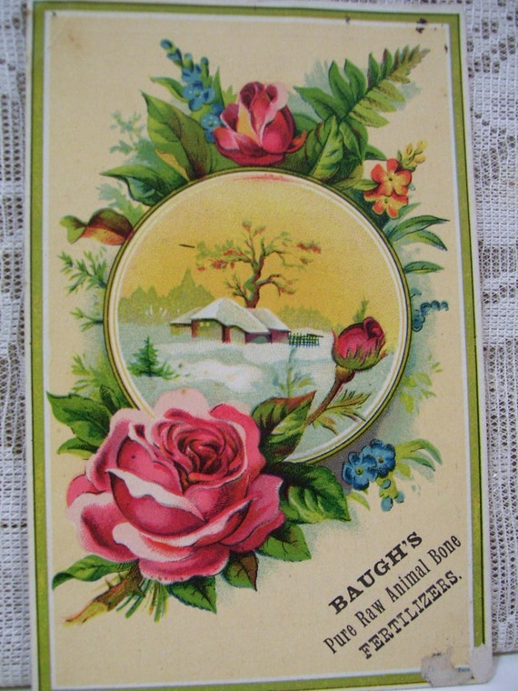 SALE---Bright Yellow Card with Large Roses - Victorian Trade Card - Baugh's Pure Raw Fertiizer - 1800's