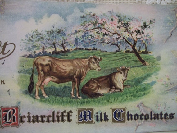 Vintage Candy Box Label - Loft Briarcliff Milk Chocolate - Cows in the Colorful Pasture - 1930's