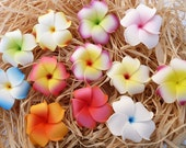 Flower Hair Clips, One Dozen,  Plumeria Hair Flowers,  Floral Hair Clips, Choose The Colors