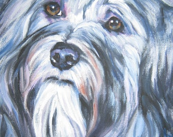 HAVANESE dog art portrait canvas PRINT of LAShepard painting 8x8
