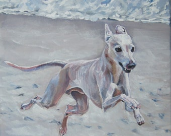 Italian Greyhound dog art CANVAS print of LA Shepard painting 8x8