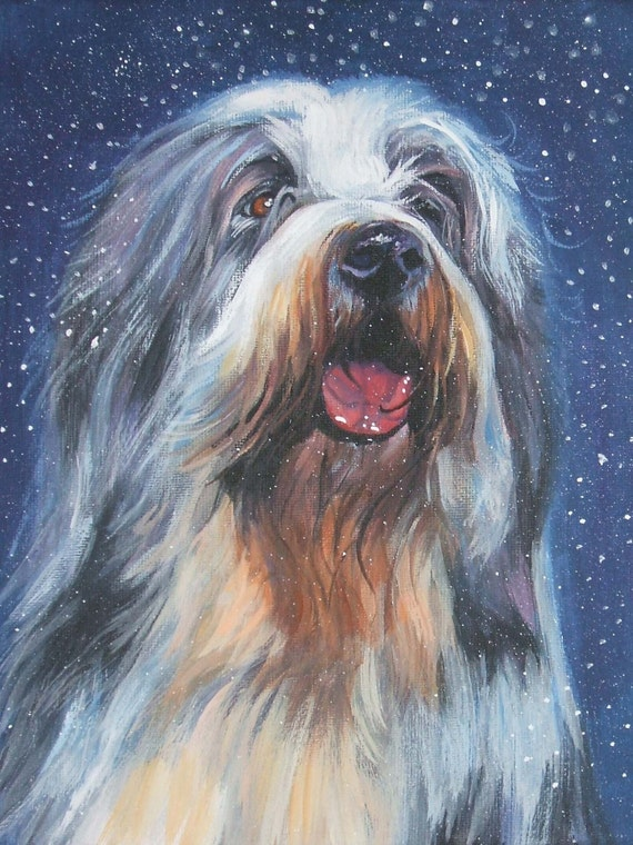 Bearded collie art print CANVAS print of LA Shepard painting 12x16