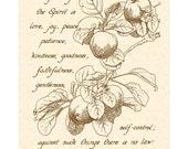 GALATIANS 5:22-23 --- 8 X 10 Hand Written Calligraphy Art Print on Parchment
